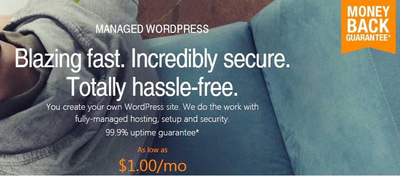 godaddy 1 month hosting discount