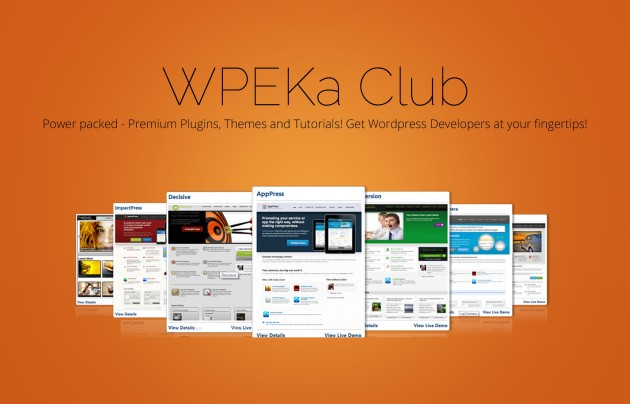 WPEka Club Discount Christmas Special Offer