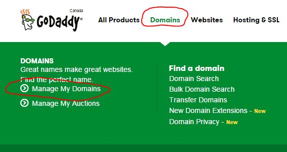 godaddy renewal domain 2